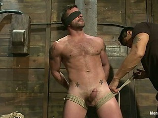 Mr Morgan Black is taken, beaten, edged together with milked.