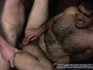 Be in charge hairy bear fucked in dramatize expunge butt